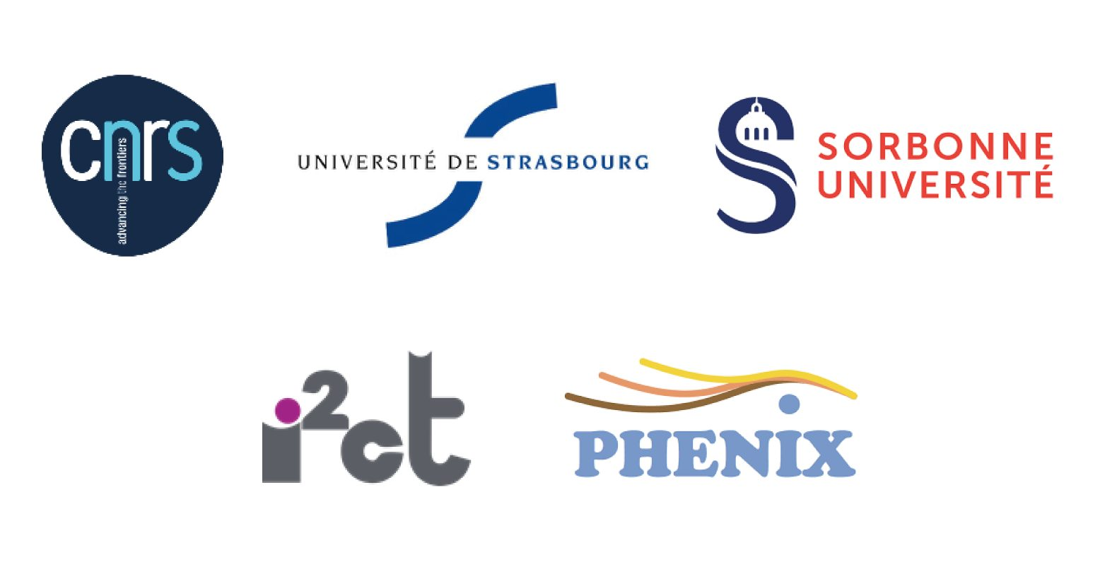 PhD Grant offer in Nanomedicine at the University of Strasbourg, France